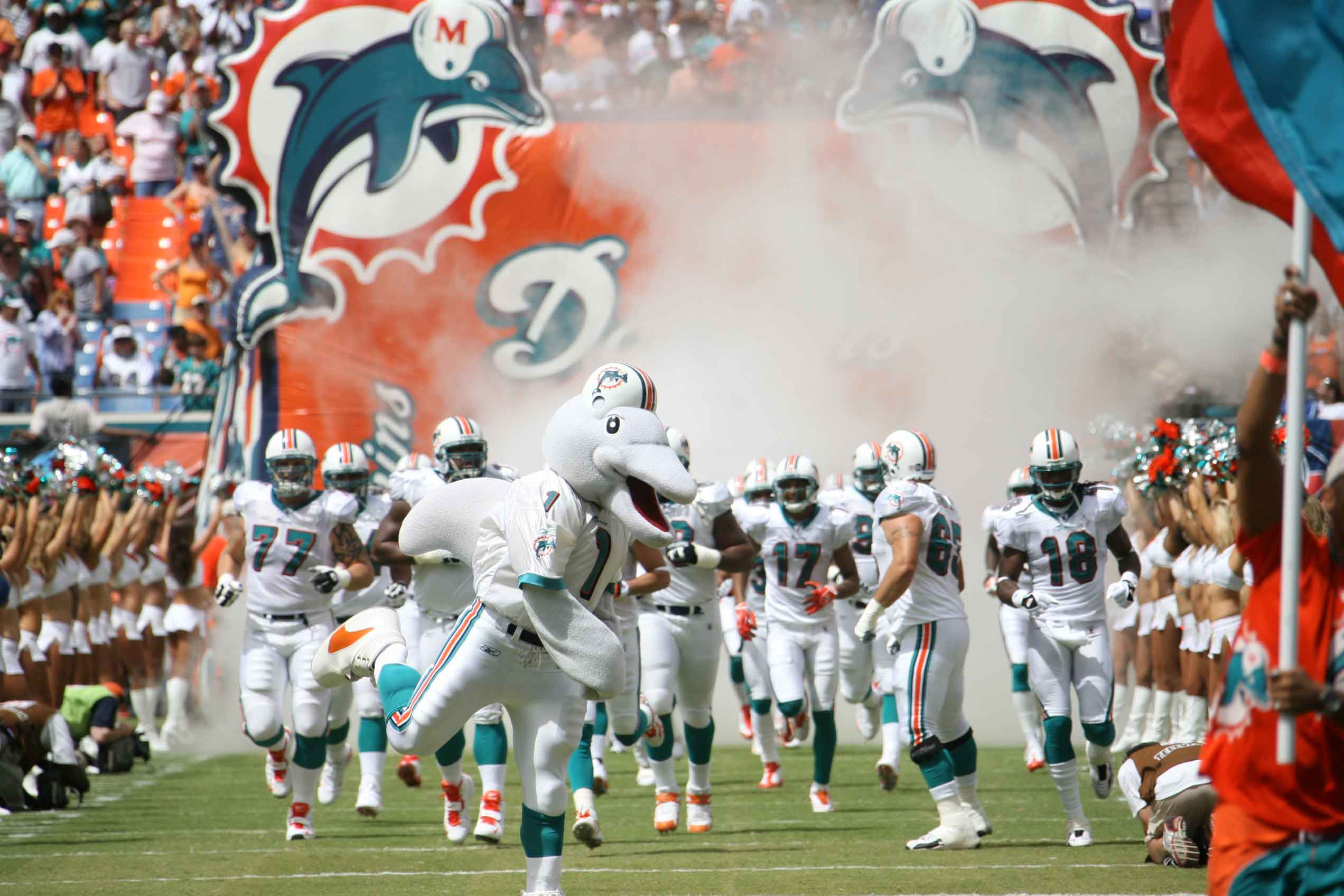 miami dolphins - photo #34